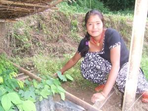 Mr. Diamond's daughter with her nursery, in Kaule, Nepal.