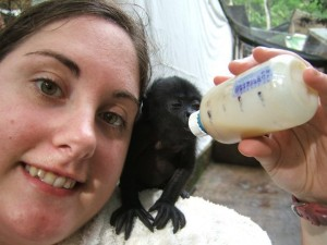Crystal bottle feeding an abandoned howler monkey at ARCAS. Guatemala.